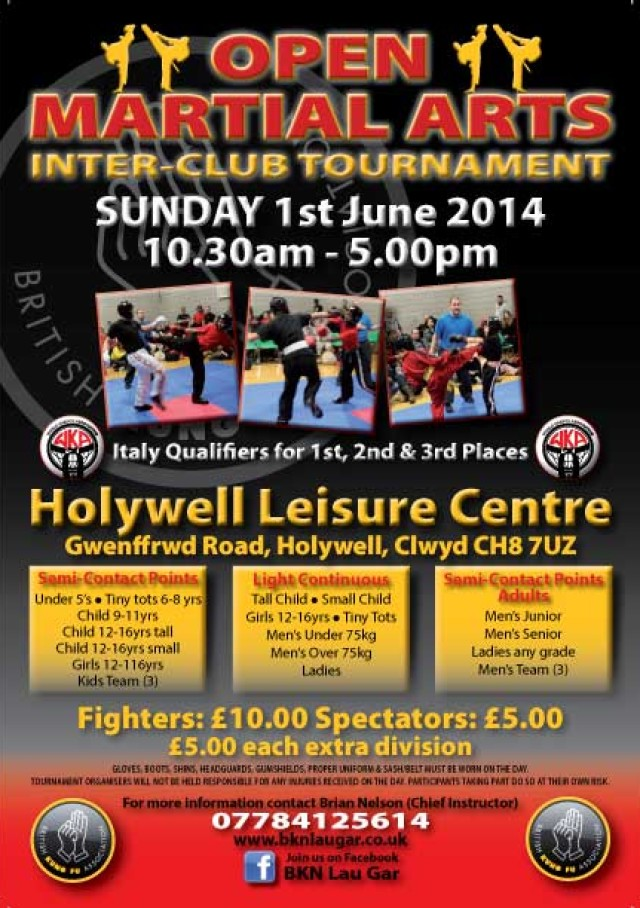 Holywell Tournament June 2014