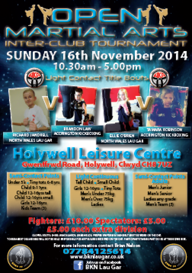Holywell Tournament November 2014